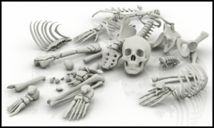 SkeletonsPartsOnTheFloor
